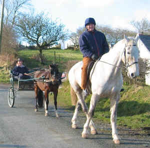 Horse rider and pony and trap on quiet country lane