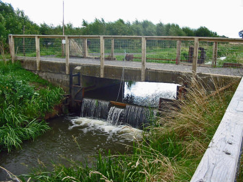 Photo of the Walk Mill's sluice